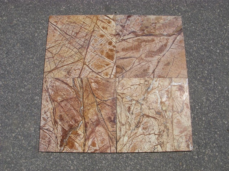 RAINFOREST BROWN 12X12 POLISHED